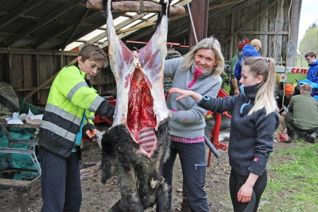 Skoleelever på Søvik fikk være med på å slakte sauer.