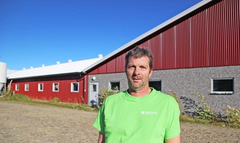 Alstahaugbønder fikk påvist MRSA-smitte i grisefjøset og måtte sende over tusen dyr på slakteriet.
