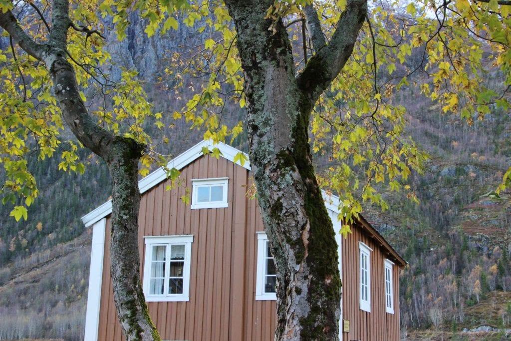 Høsten har satt sitt tydelige preg på Helgeland.