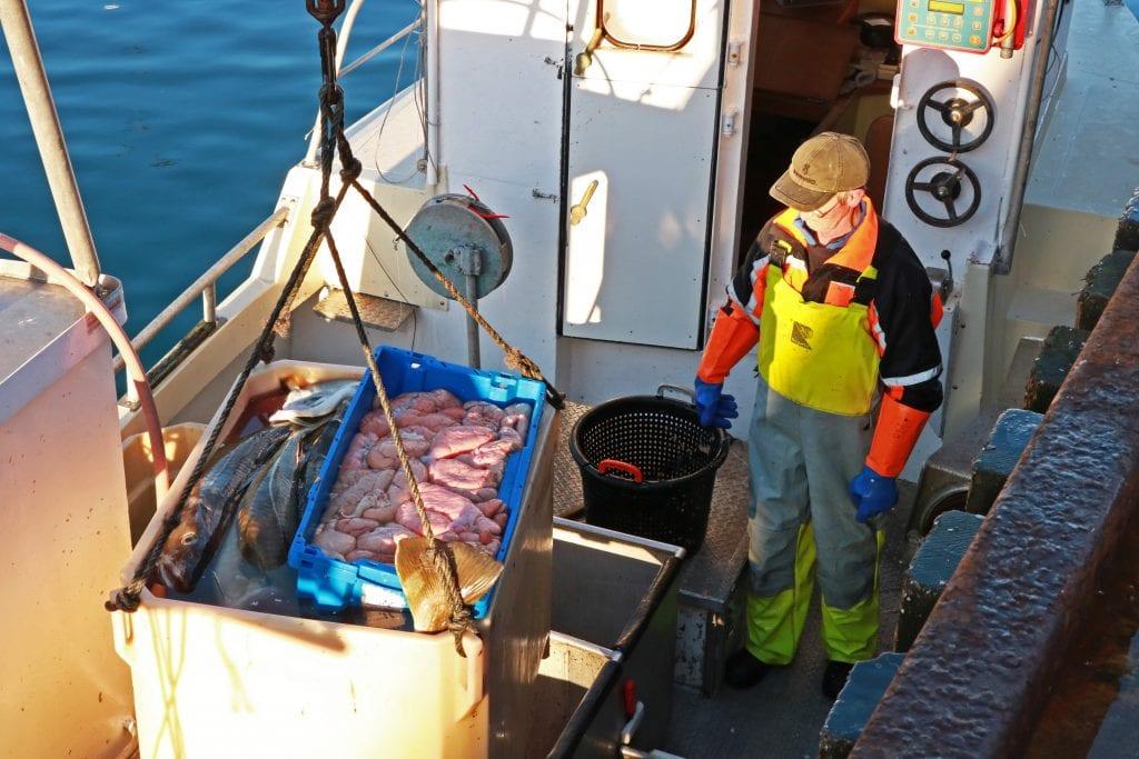 Fisker ved kai i Træna, klar til å levere dagens fangst.