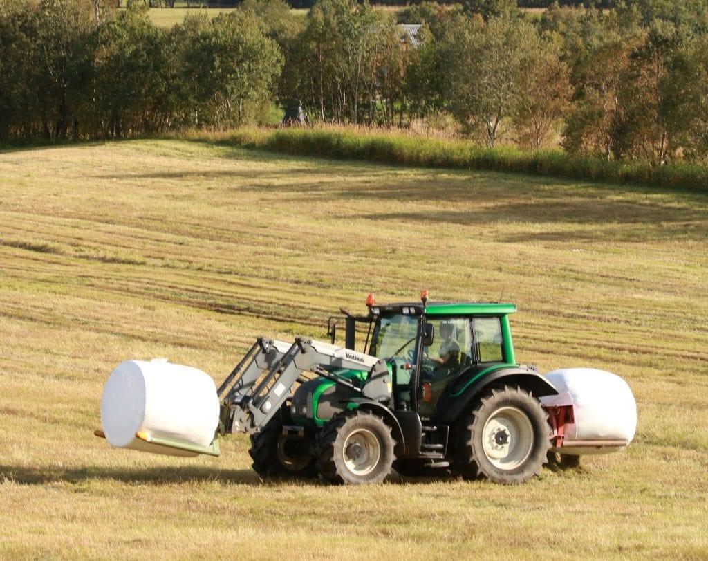 Landbruk var tema i Alstahaug formannskap nylig. Det resulterte i et vedtak om å rullere kommunens landbruksplan.