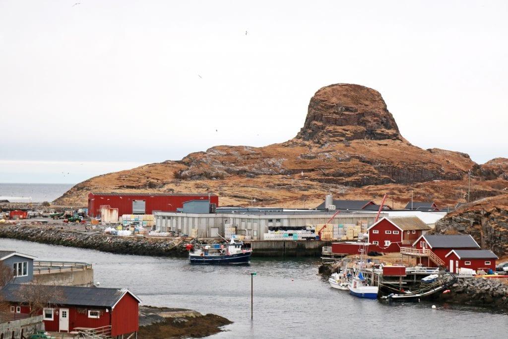 Kommunal krisehjelp redder arbeidsplassene hos Modolv Sjøset Fisk AS.