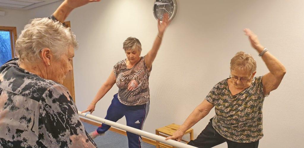 Frisklivssentralen tilbyr blant annet treningsgrpper som skal bidra til å forebygge fall.