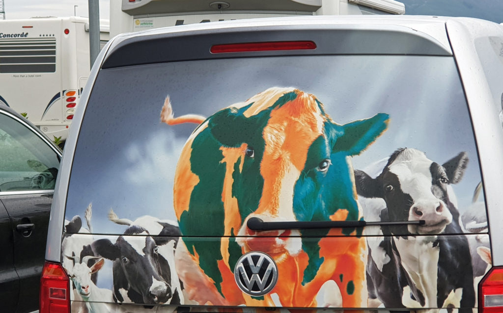 Landbruksmyndighetene i Alstahaug ønsker seg flere landbruksbilder i forbindelse med at de arrangerer konkurranse.